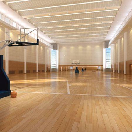 高性能运动木地板系统